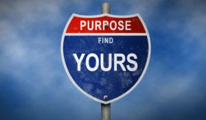 purpose find